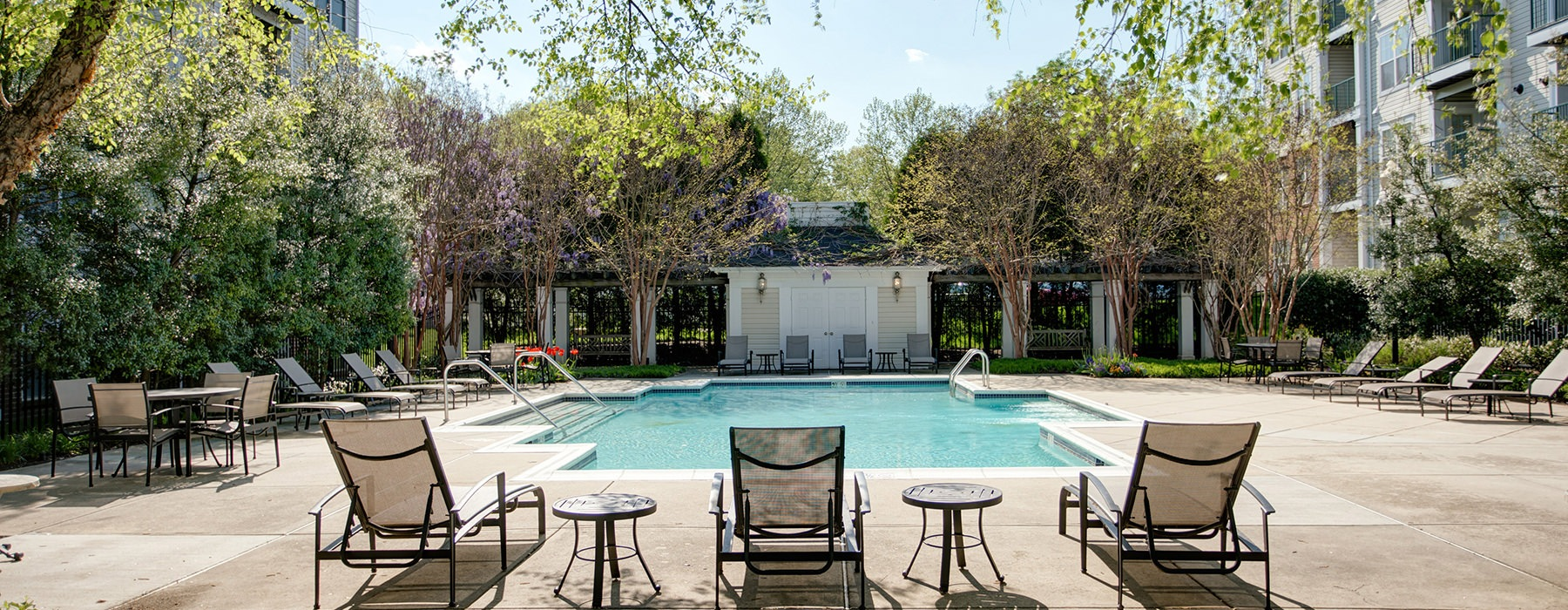 pool with lounge chairs and trees